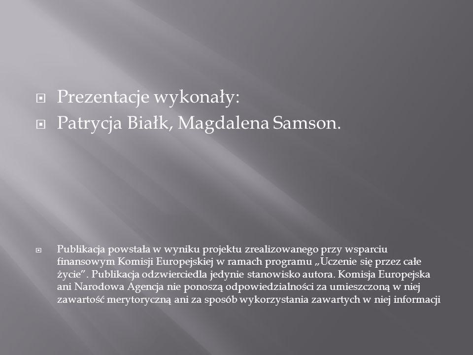 Prezentacje wykonały: Patrycja Białk, Magdalena Samson.