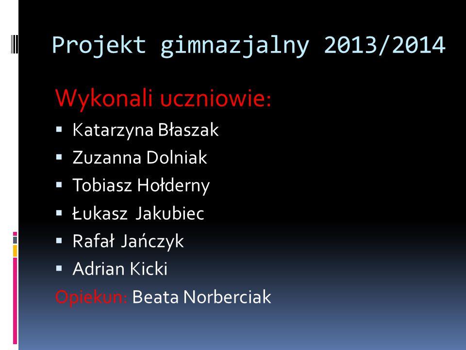 Projekt gimnazjalny 2013/2014 Wykonali uczniowie: Katarzyna Błaszak