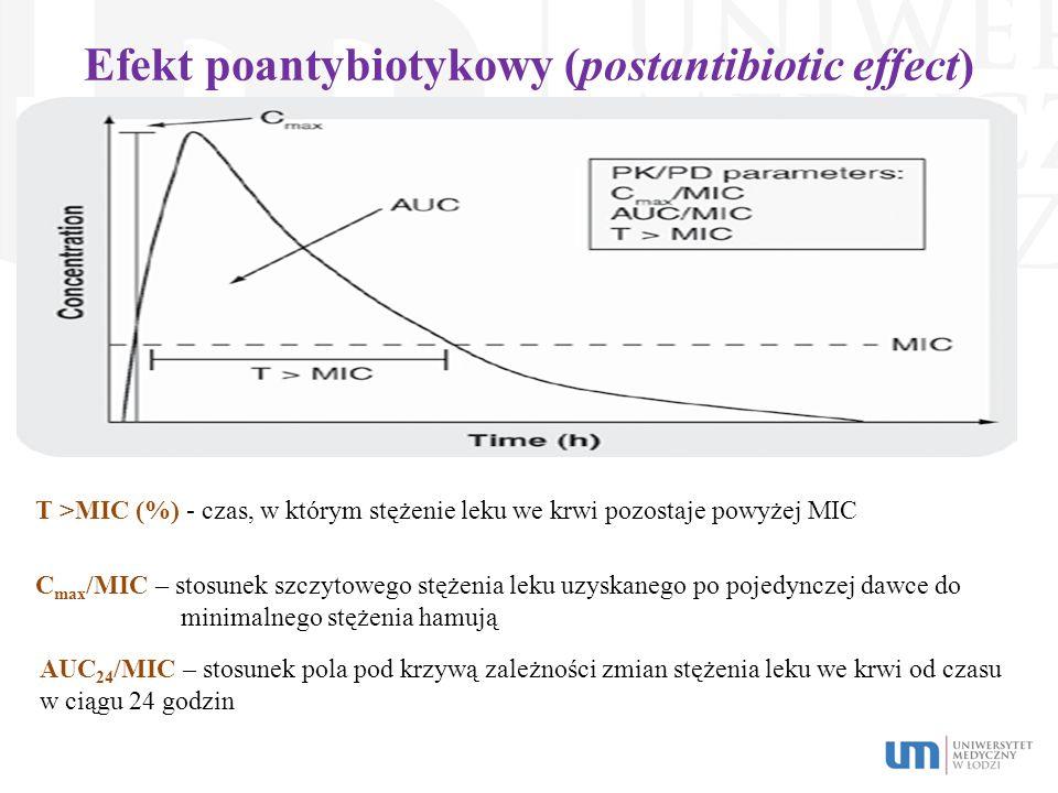 Efekt poantybiotykowy (postantibiotic effect)
