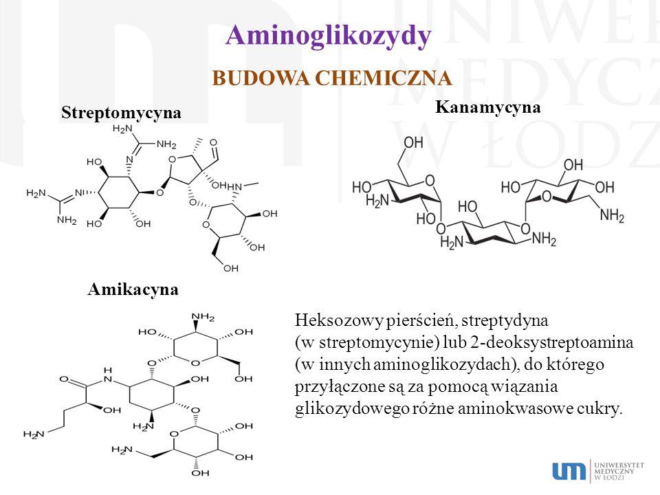 Aminoglikozydy BUDOWA CHEMICZNA Kanamycyna Streptomycyna Amikacyna