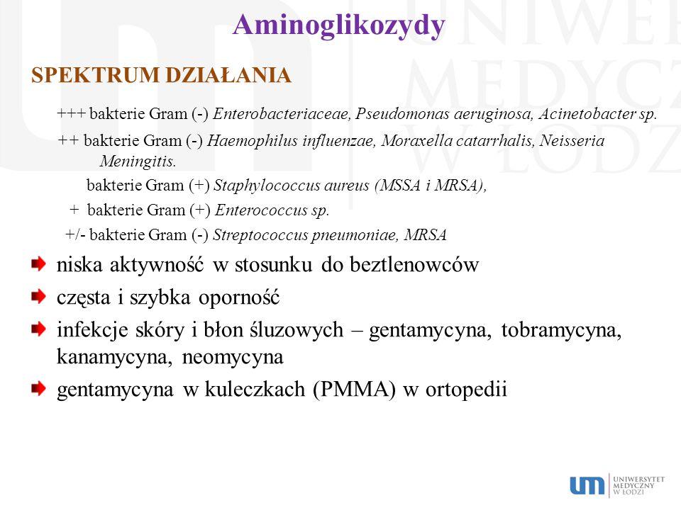 Aminoglikozydy SPEKTRUM DZIAŁANIA. +++ bakterie Gram (-) Enterobacteriaceae, Pseudomonas aeruginosa, Acinetobacter sp.