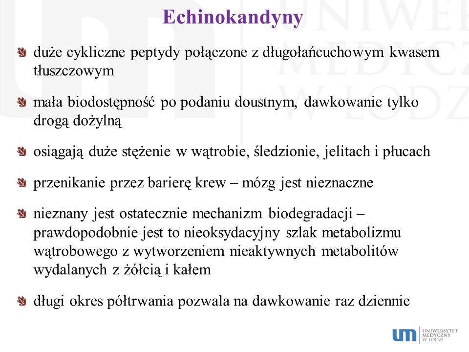 Echinokandyny duże cykliczne peptydy połączone z długołańcuchowym kwasem tłuszczowym.