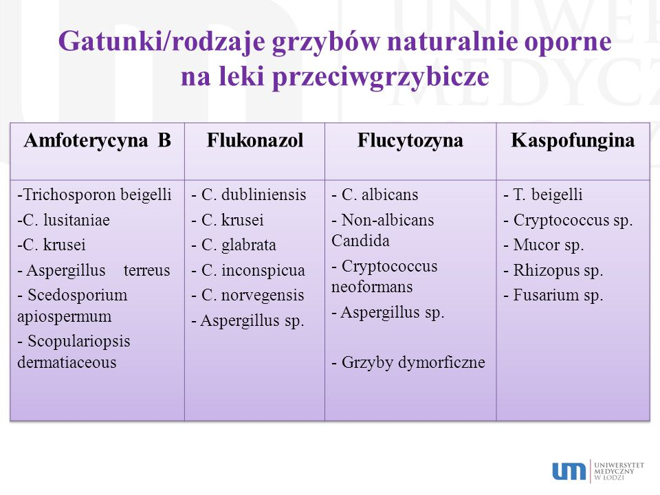 Gatunki/rodzaje grzybów naturalnie oporne na leki przeciwgrzybicze