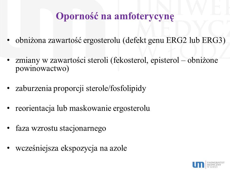 Oporność na amfoterycynę