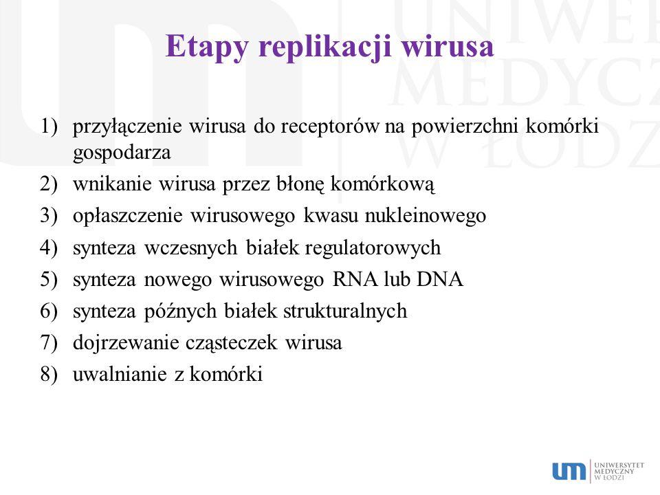 Etapy replikacji wirusa