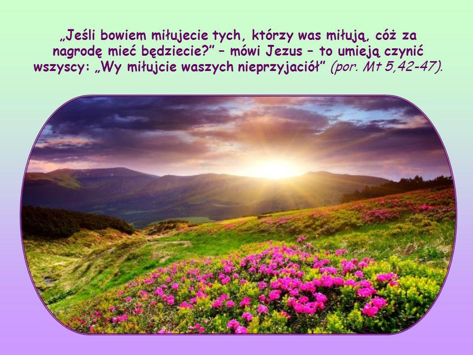 """""""Jeśli bowiem miłujecie tych, którzy was miłują, cóż za nagrodę mieć będziecie – mówi Jezus – to umieją czynić wszyscy: """"Wy miłujcie waszych nieprzyjaciół (por."""