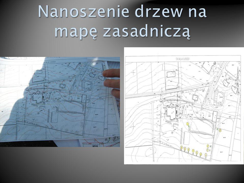 Nanoszenie drzew na mapę zasadniczą