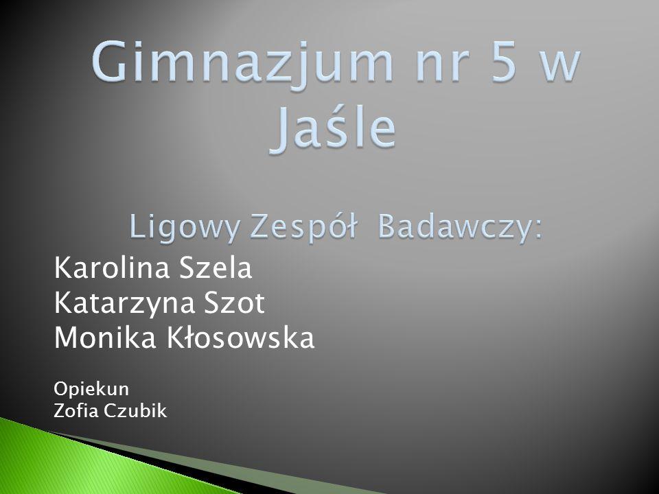 Gimnazjum nr 5 w Jaśle Ligowy Zespół Badawczy: