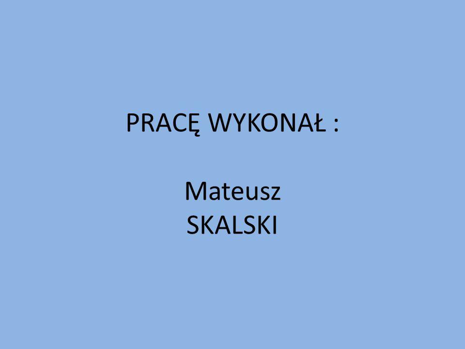 PRACĘ WYKONAŁ : Mateusz SKALSKI