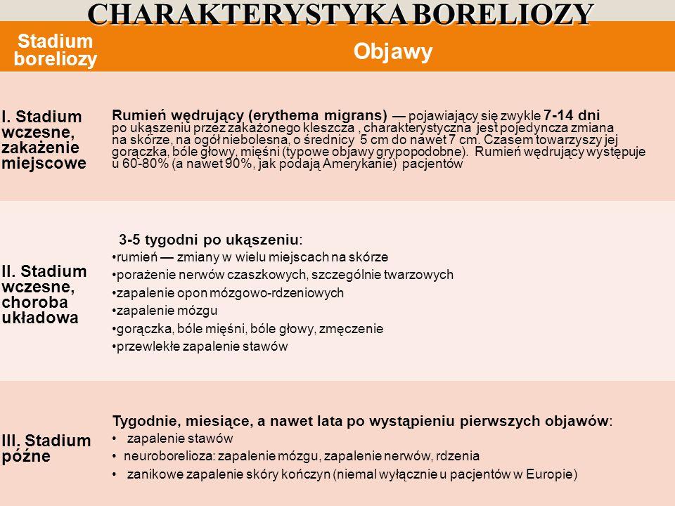 CHARAKTERYSTYKA BORELIOZY
