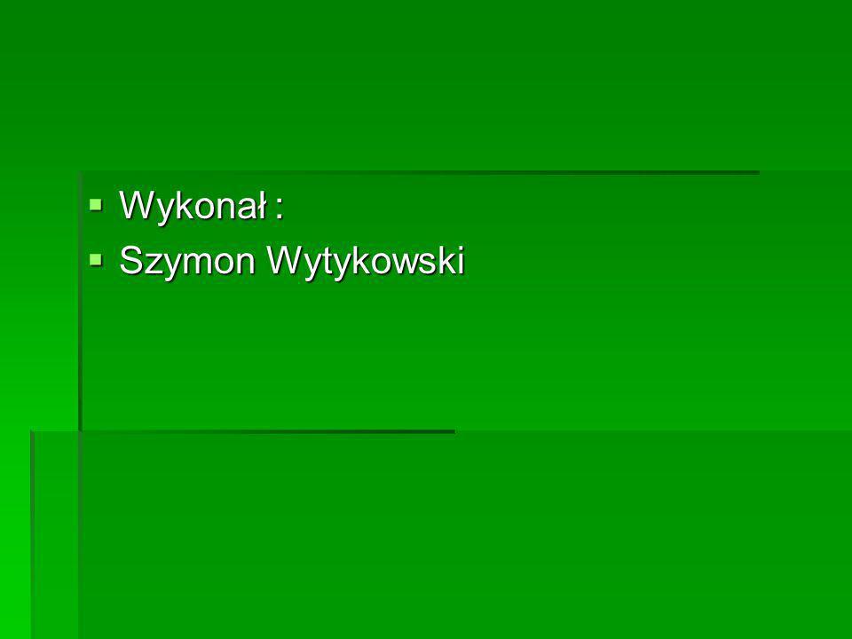 Wykonał : Szymon Wytykowski