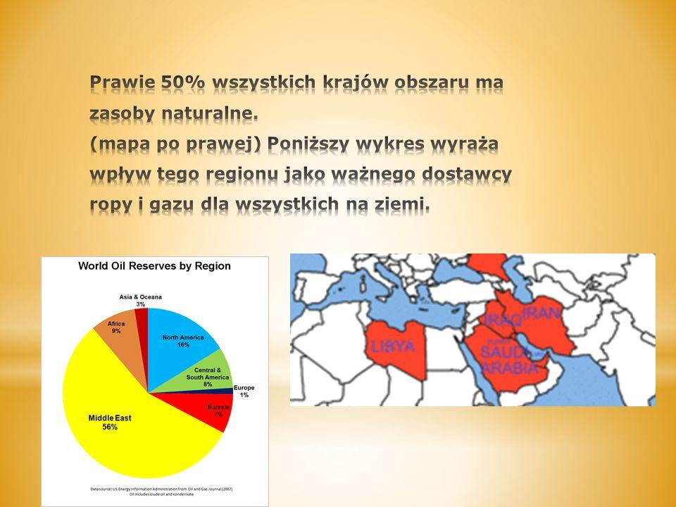 Prawie 50% wszystkich krajów obszaru ma zasoby naturalne