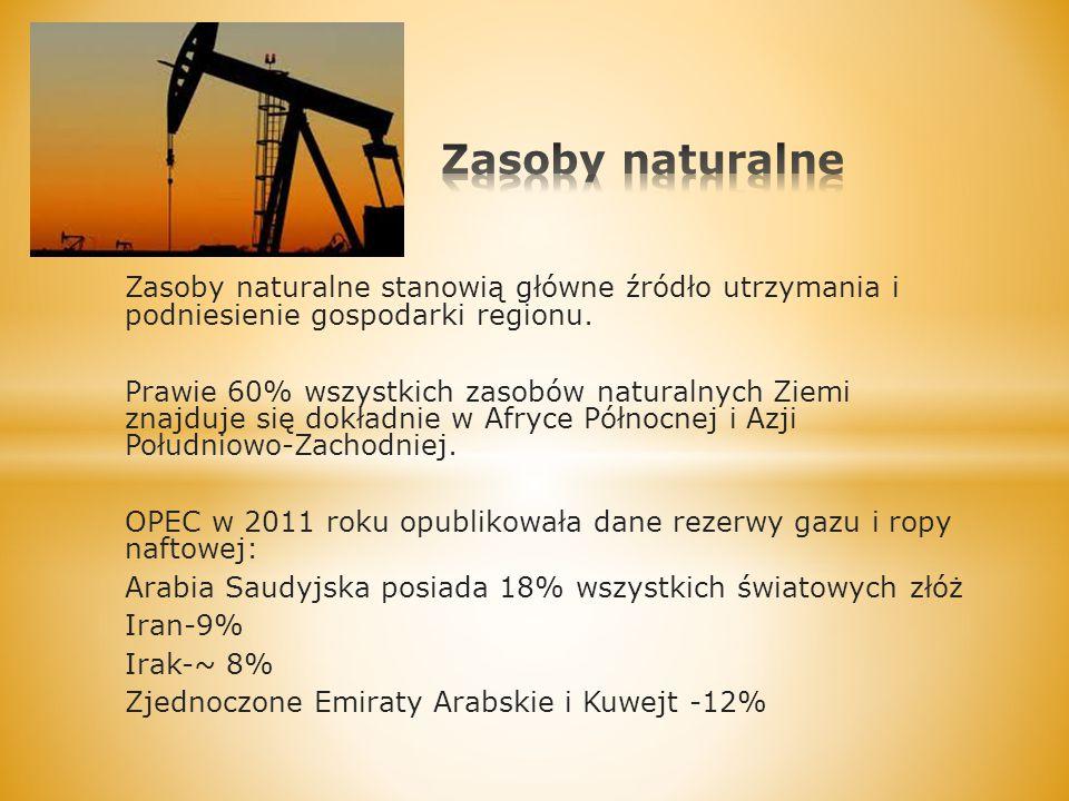 Zasoby naturalne Zasoby naturalne stanowią główne źródło utrzymania i podniesienie gospodarki regionu.
