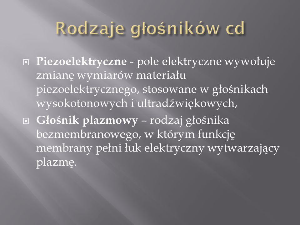 Rodzaje głośników cd