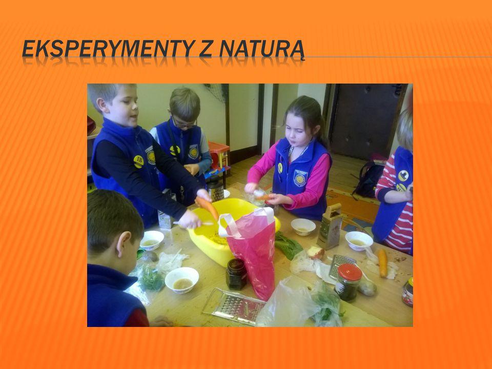 Eksperymenty z naturą Zajęcia plastyczne kształtują w nas poczucie piękna i estetyki.