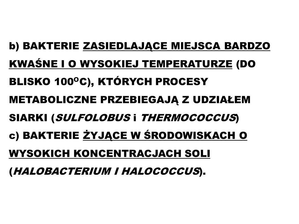 b) BAKTERIE ZASIEDLAJĄCE MIEJSCA BARDZO KWAŚNE I O WYSOKIEJ TEMPERATURZE (DO BLISKO 100OC), KTÓRYCH PROCESY METABOLICZNE PRZEBIEGAJĄ Z UDZIAŁEM SIARKI (SULFOLOBUS i THERMOCOCCUS)