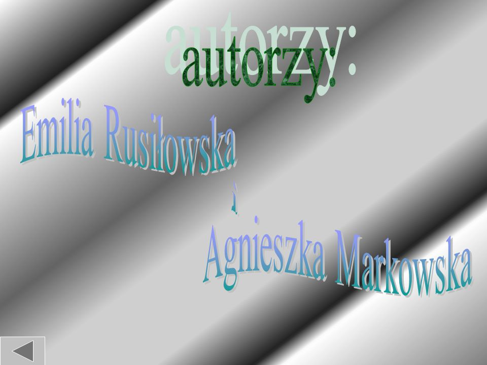 autorzy: Emilia Rusiłowska i Agnieszka Markowska