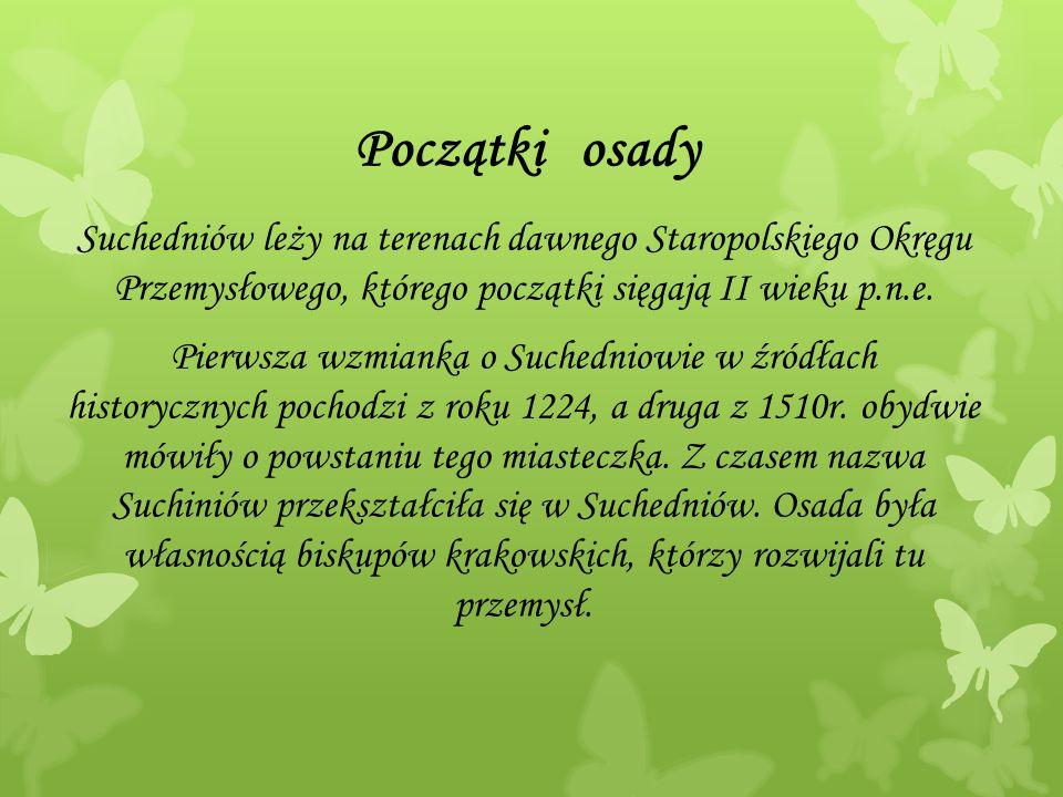 Początki osady Suchedniów leży na terenach dawnego Staropolskiego Okręgu Przemysłowego, którego początki sięgają II wieku p.n.e.