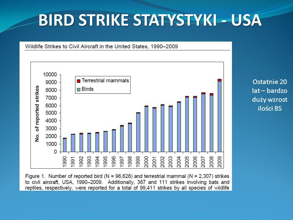 BIRD STRIKE STATYSTYKI - USA