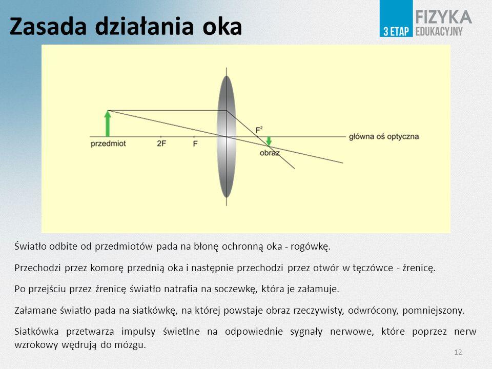 Zasada działania oka Światło odbite od przedmiotów pada na błonę ochronną oka - rogówkę.