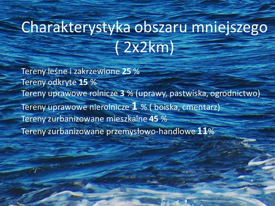 ( 2x2km) Tereny leśne i zakrzewione 25 % Tereny odkryte 15 %