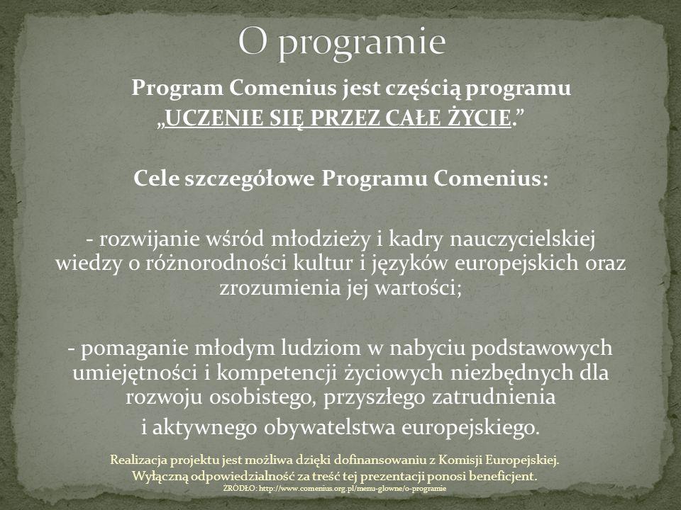 O programie