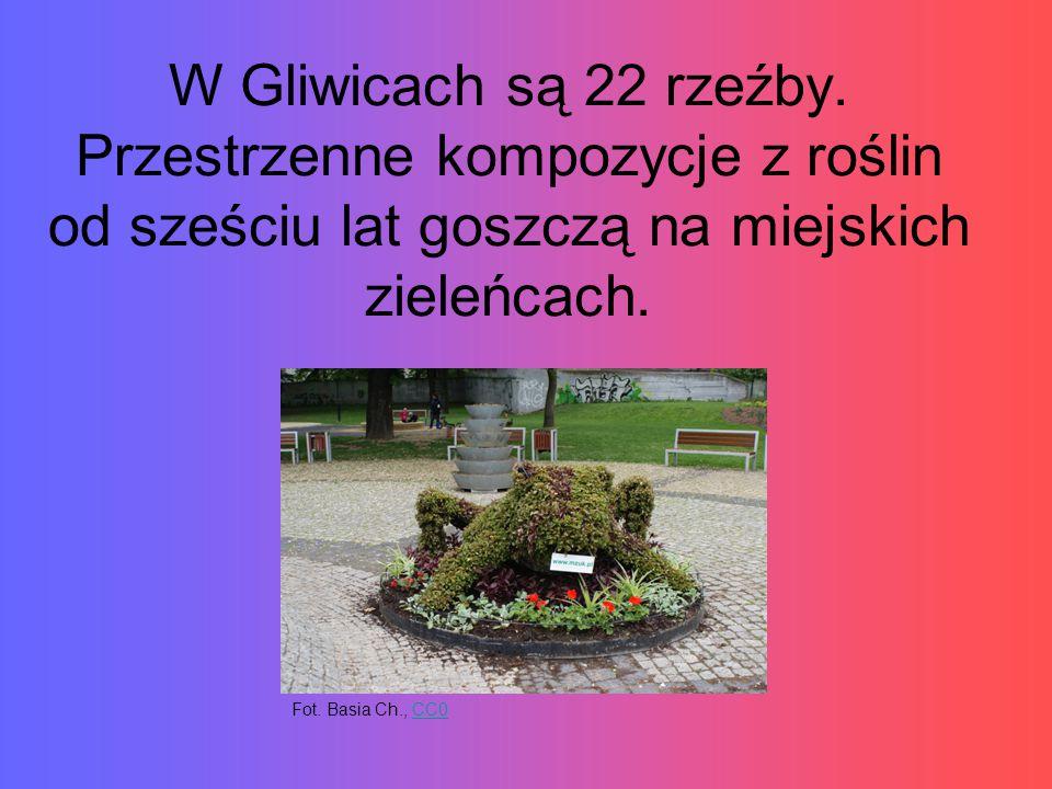 W Gliwicach są 22 rzeźby. Przestrzenne kompozycje z roślin od sześciu lat goszczą na miejskich zieleńcach.