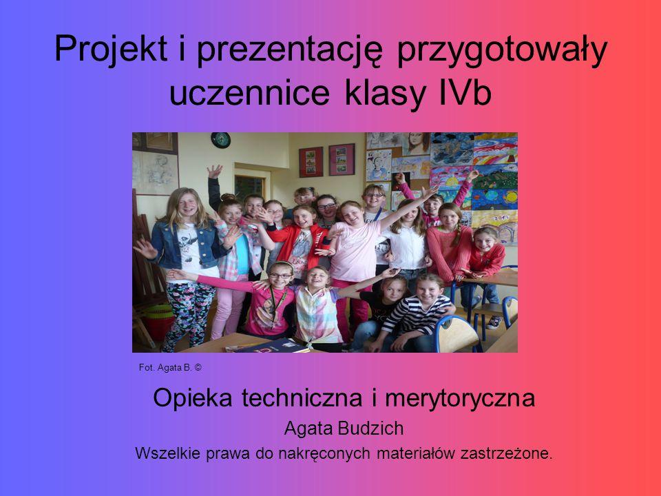 Projekt i prezentację przygotowały uczennice klasy IVb