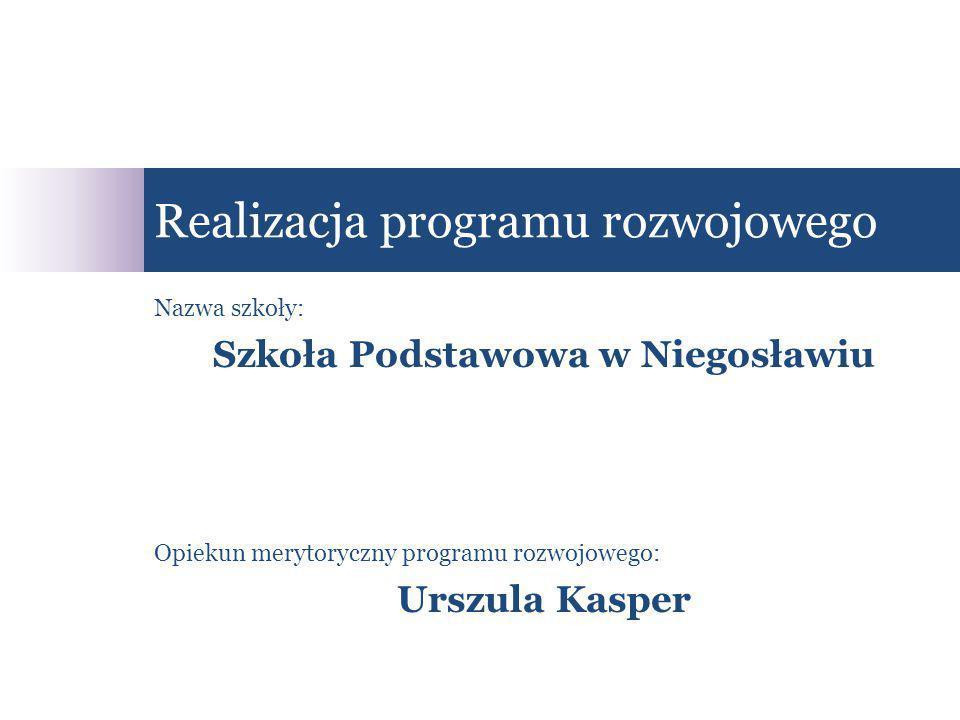 Realizacja programu rozwojowego