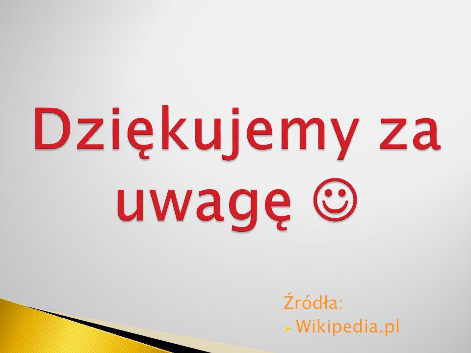 Dziękujemy za uwagę  Źródła: Wikipedia.pl