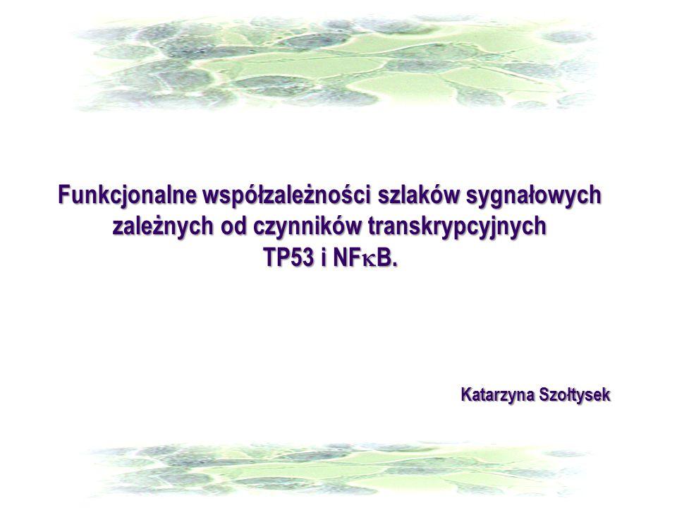 Funkcjonalne współzależności szlaków sygnałowych zależnych od czynników transkrypcyjnych TP53 i NFkB.