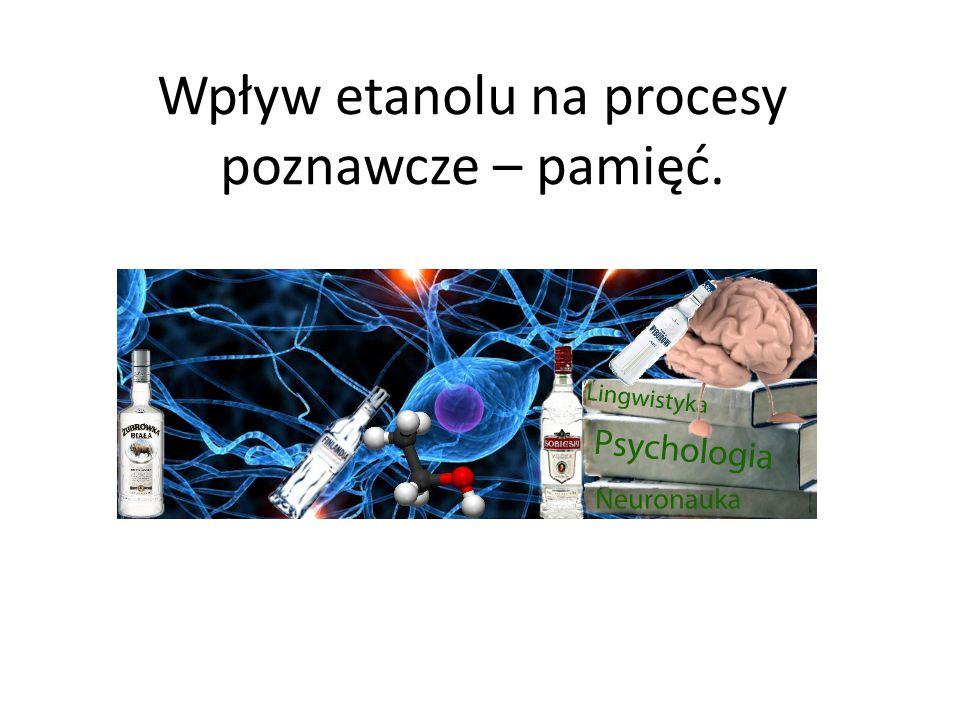 Wpływ etanolu na procesy poznawcze – pamięć.