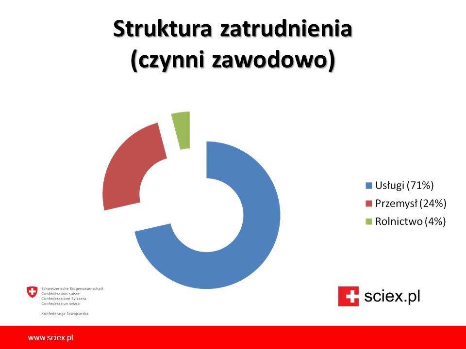 Struktura zatrudnienia (czynni zawodowo)