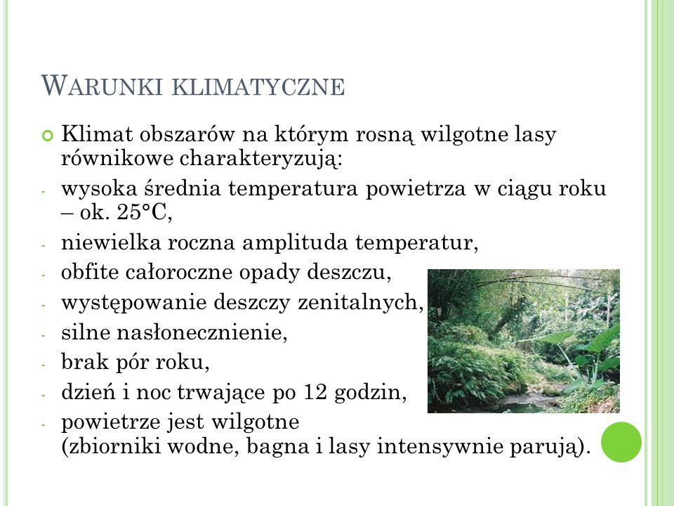 Warunki klimatyczne Klimat obszarów na którym rosną wilgotne lasy równikowe charakteryzują:
