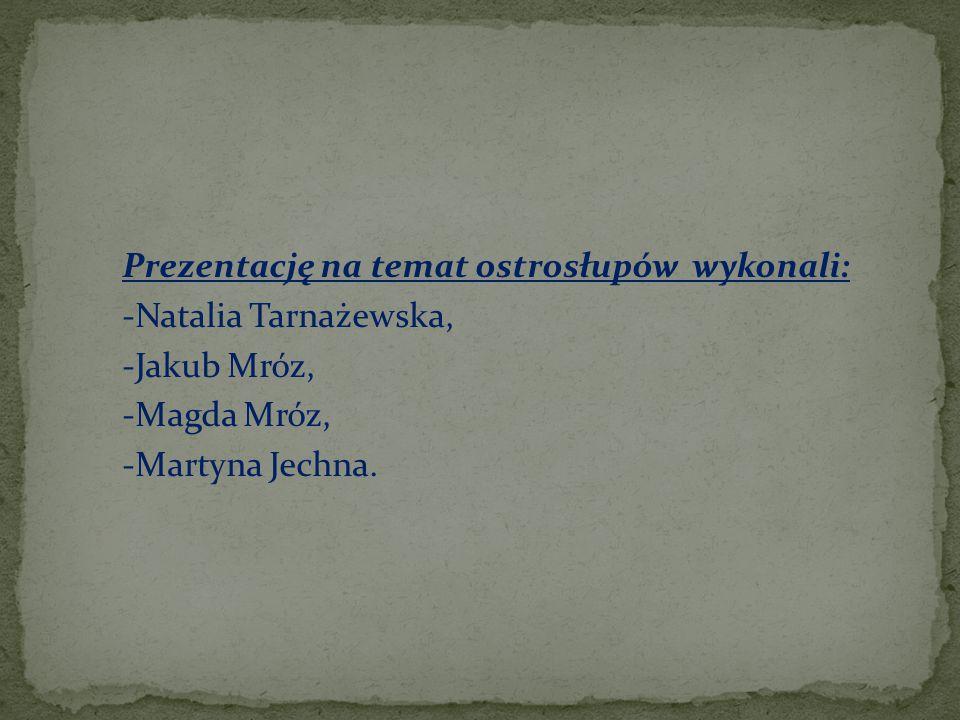 Prezentację na temat ostrosłupów wykonali: -Natalia Tarnażewska, -Jakub Mróz, -Magda Mróz, -Martyna Jechna.