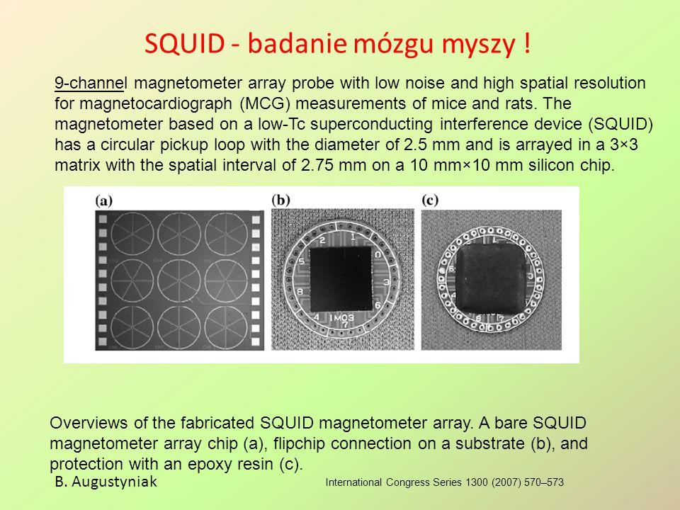 SQUID - badanie mózgu myszy !