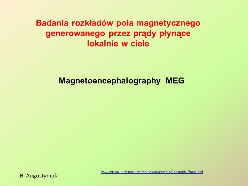 Badania rozkładów pola magnetycznego generowanego przez prądy płynące lokalnie w ciele