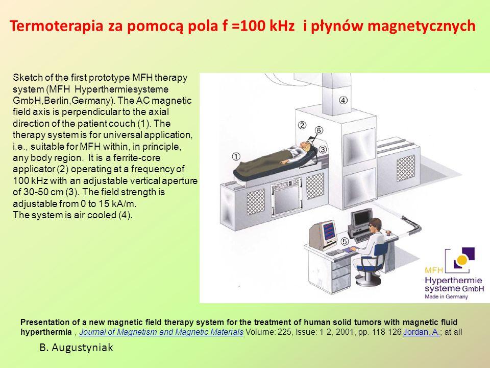 Termoterapia za pomocą pola f =100 kHz i płynów magnetycznych