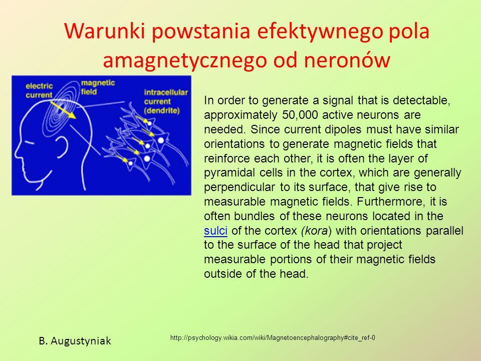 Warunki powstania efektywnego pola amagnetycznego od neronów