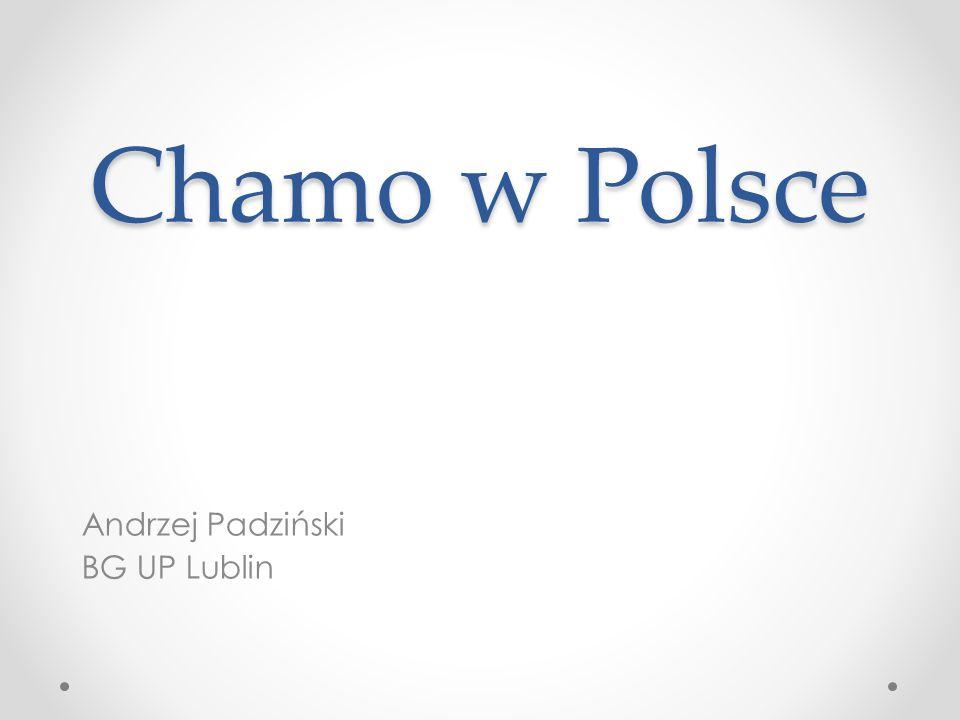 Andrzej Padziński BG UP Lublin