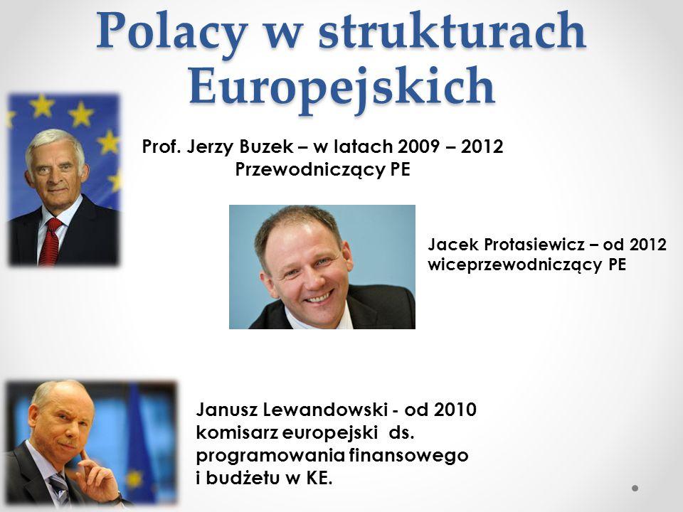 Polacy w strukturach Europejskich