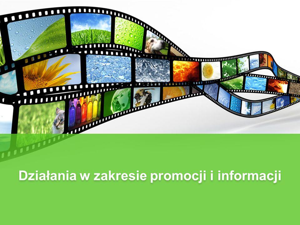 Działania w zakresie promocji i informacji