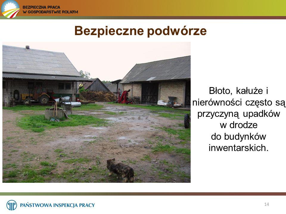 Bezpieczne podwórze Błoto, kałuże i nierówności często są przyczyną upadków w drodze do budynków inwentarskich.