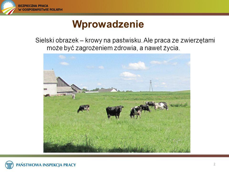 Wprowadzenie Sielski obrazek – krowy na pastwisku. Ale praca ze zwierzętami może być zagrożeniem zdrowia, a nawet życia.