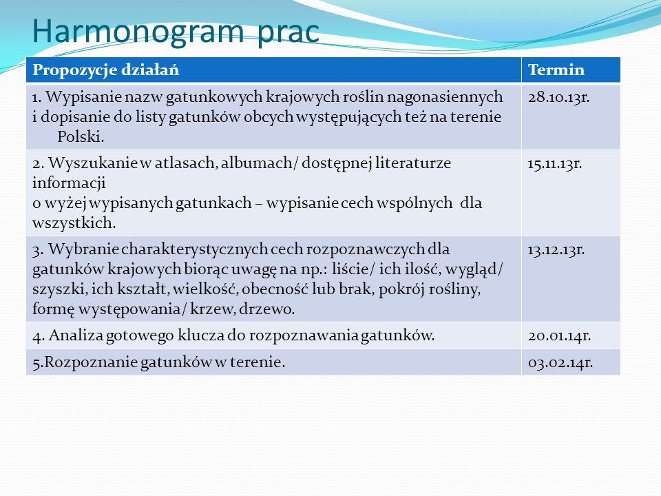 Harmonogram prac Propozycje działań Termin