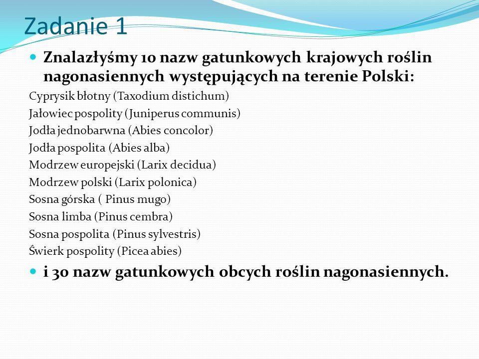 Zadanie 1 Znalazłyśmy 10 nazw gatunkowych krajowych roślin nagonasiennych występujących na terenie Polski: