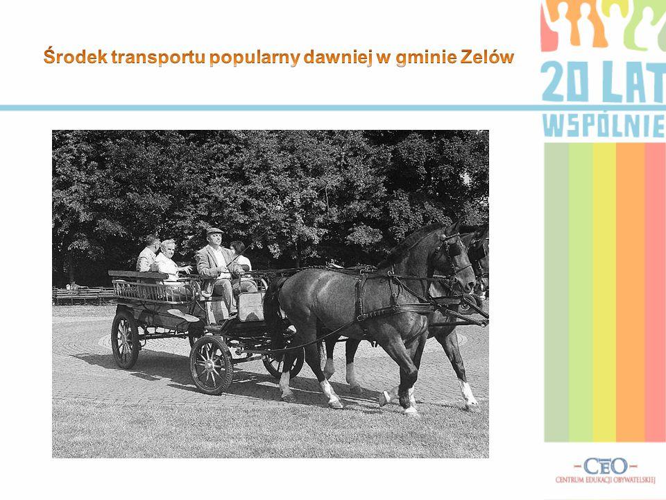 Środek transportu popularny dawniej w gminie Zelów