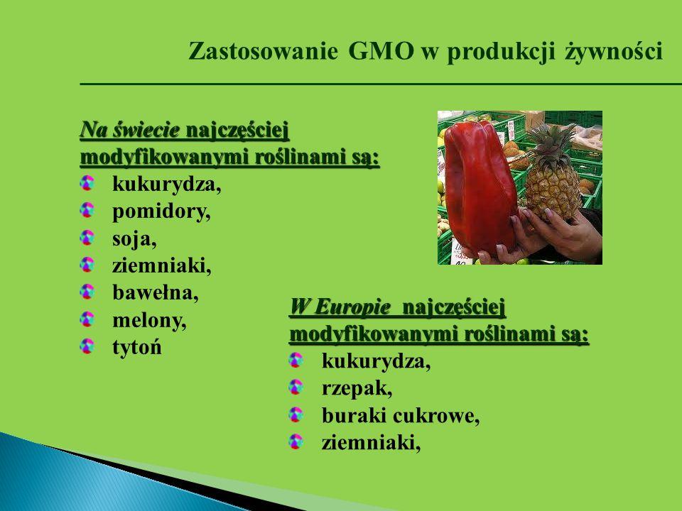 Zastosowanie GMO w produkcji żywności