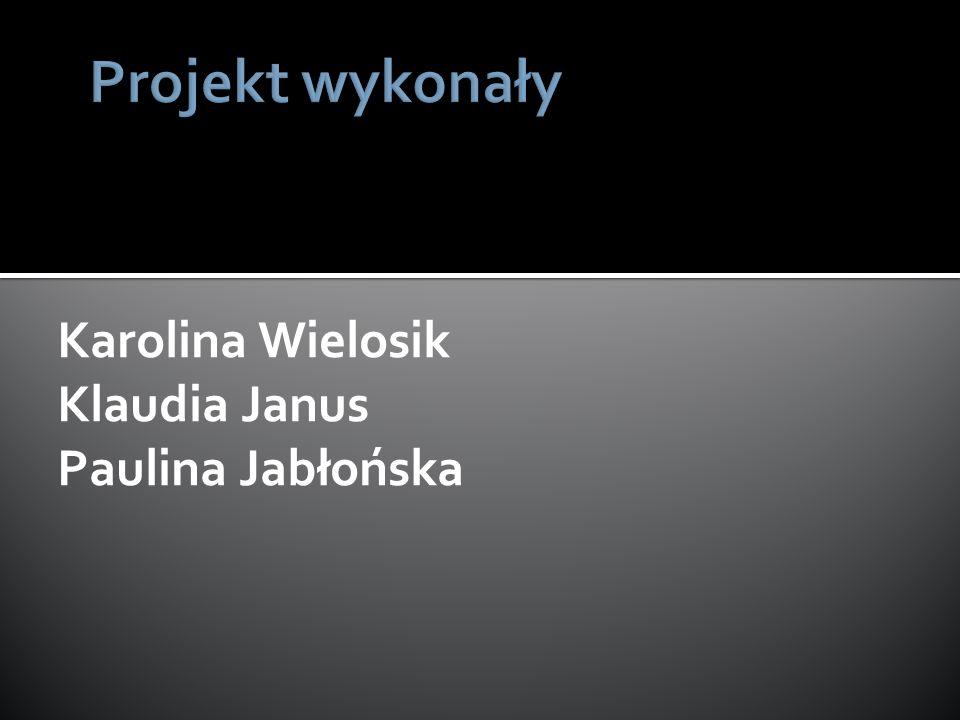 Projekt wykonały Karolina Wielosik Klaudia Janus Paulina Jabłońska