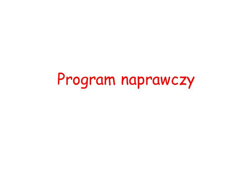 Program naprawczy